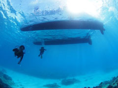 Hawaii boat diving