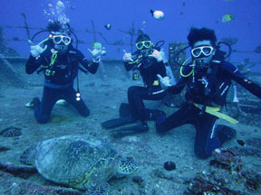 Hawaii scuba diving tours